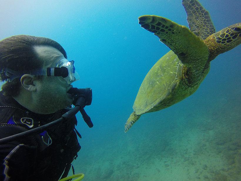 Visibilidade maravilhosa em mergulho no Havaí